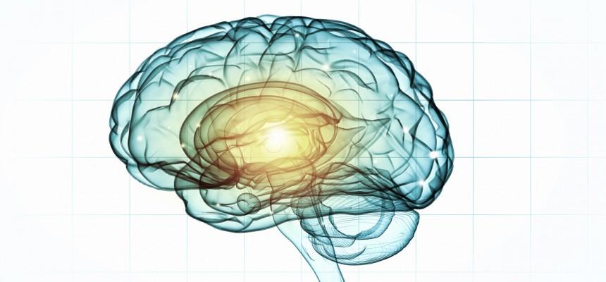 Sept conseils pratiques pour entretenir sa mémoire et prévenir Alzheimer
