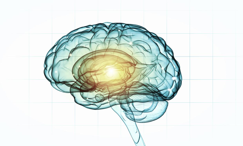 Entretenu sa mémoire en faisant travailler son cerveau