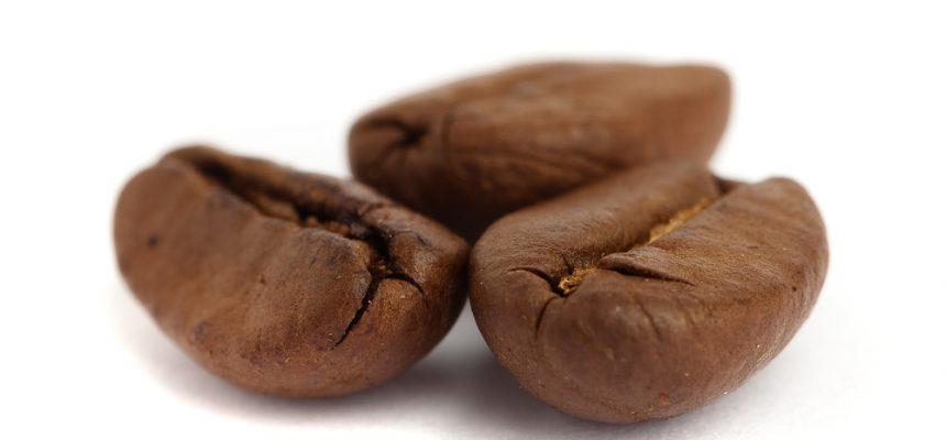 La caféine contre la maladie d'Alzheimer : un futur traitement ?