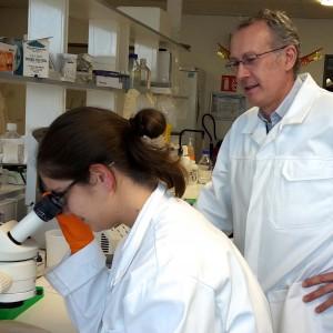 Alzheimer : 99 159 € de plus alloués à la recherche !