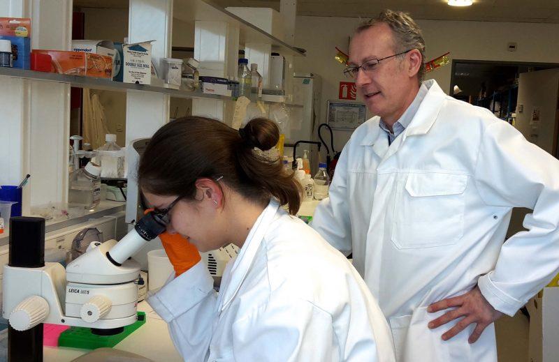 Une subvention de recherche supplémentaire financée par LECMA Vaincre Alzheimer
