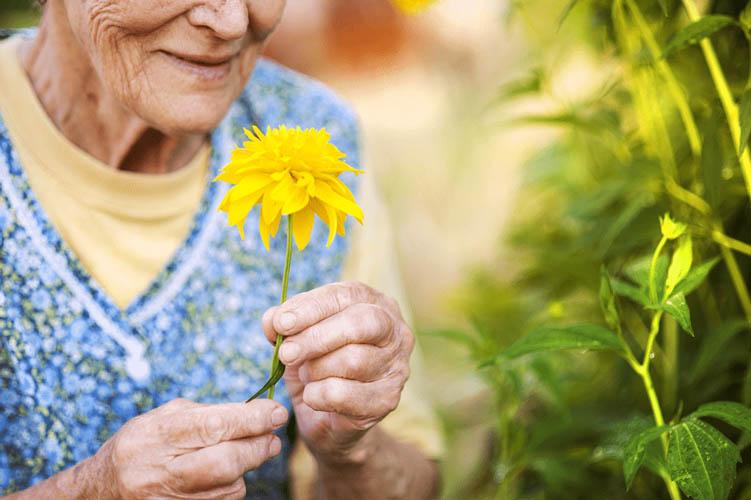 enquete Alzheimer - Diagnostic précoce