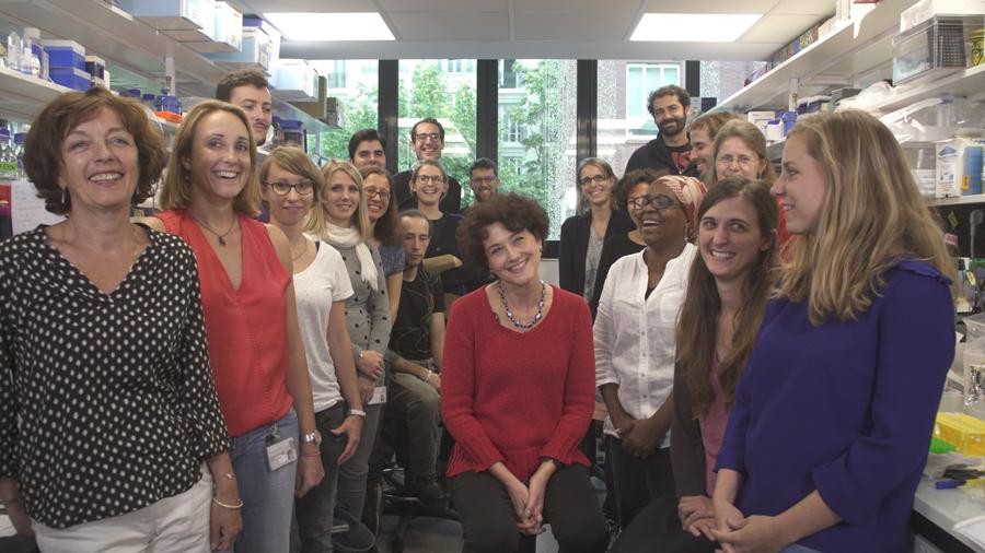 Equipe du Professeur Edith Heard financée par la Fondation Vaincre Alzheimer