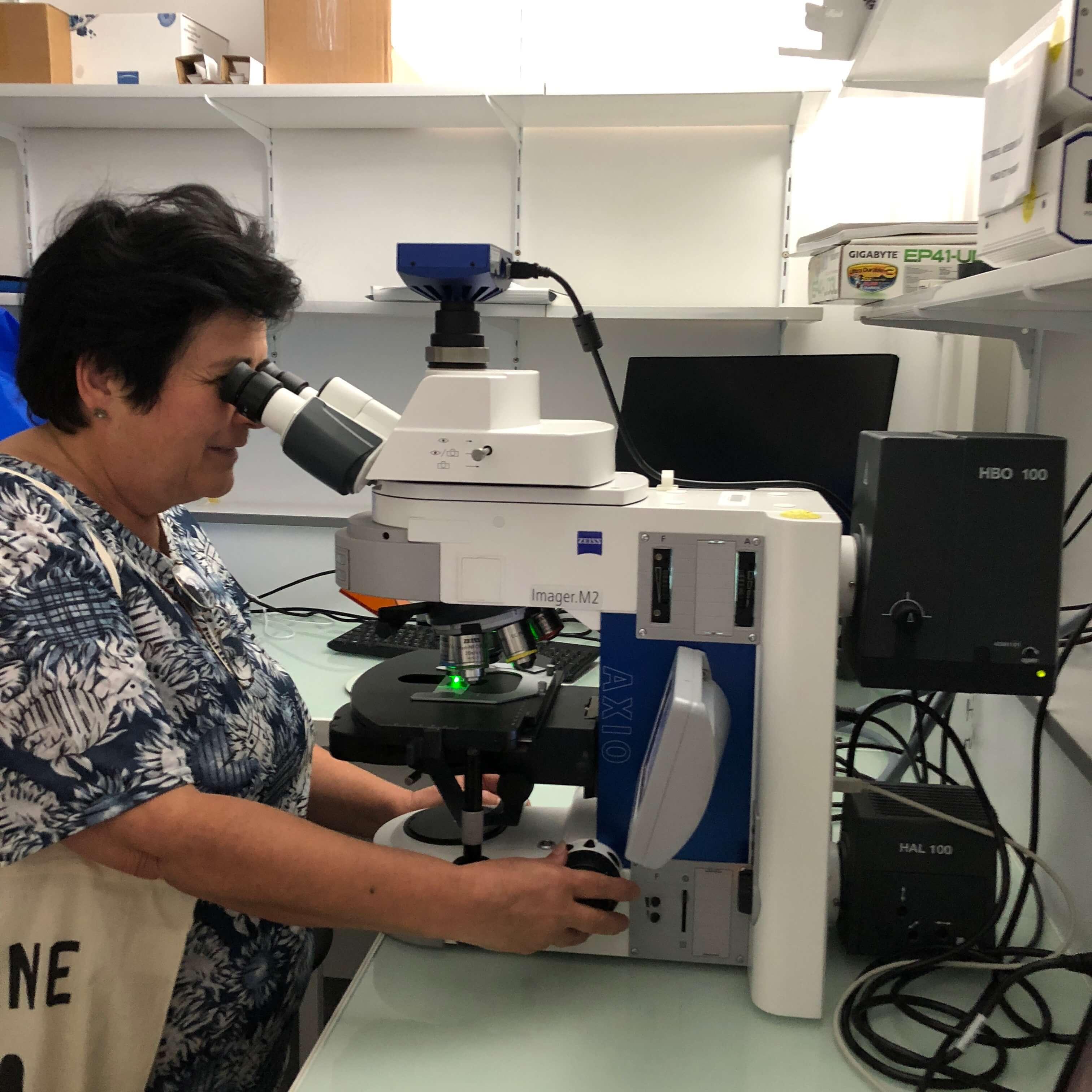 visite de laboratoire pour la journée mondiale de l'alzheimer