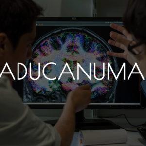 Avancées de la recherche médicale : du nouveau pour l'Aducanumab en 2020