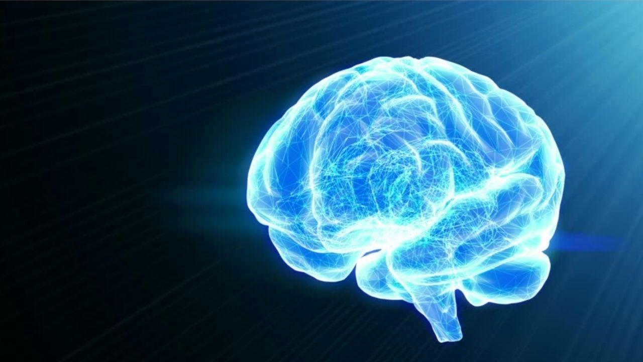 don de cerveau
