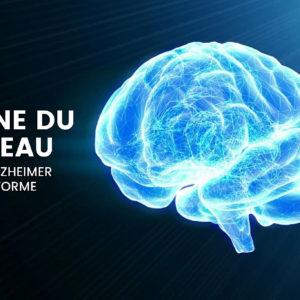 Le cerveau face à la maladie : comment relever le défi ?