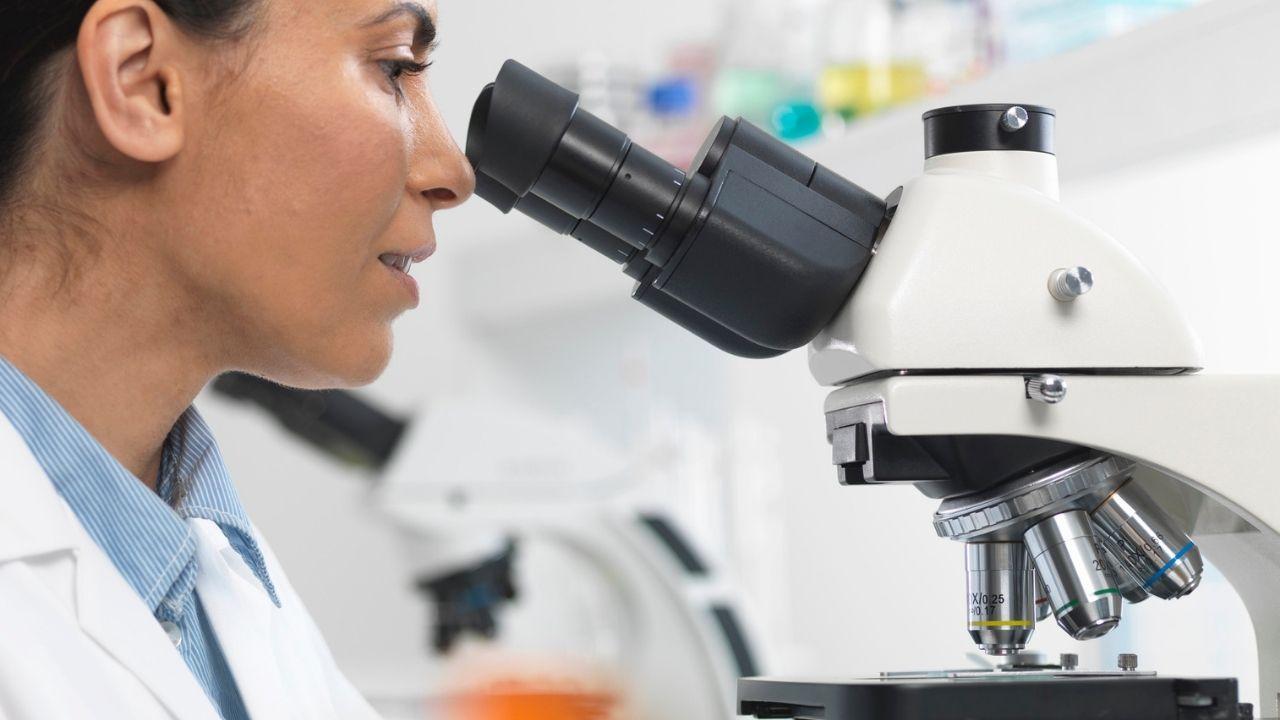 Recherche Alzheimer et avancées